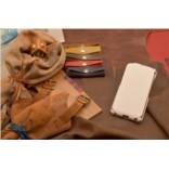 Кожаный чехол для iPhone 6 «Снежный флотер»