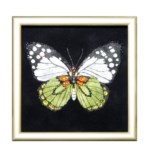 Картина с кристаллами Swarovski «Бабочка-капустница»